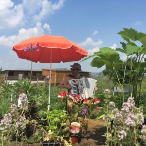 Musician Luke Carver Goss plays an accordion beneath an orange parasol surrounded by flowers